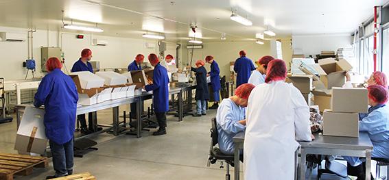 ESAT - Etablissement et service d'aide par le travail
